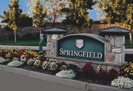 springfieldlinkpic