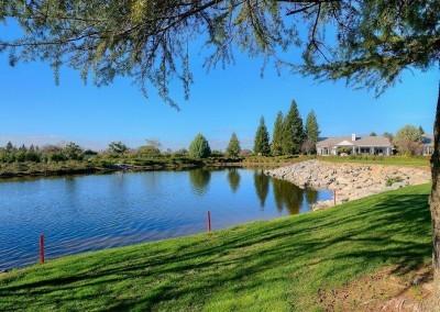 Sun City Roseville Pond #1